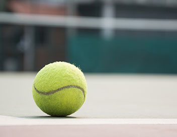 Tennis : Tournoi ATP d'Anvers